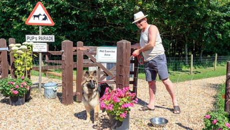 Welcome Pet Policy, Dog friendly Caravan Park in Somerset